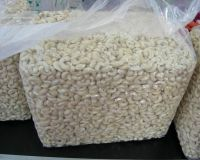 Grade A Cashew Nuts/ Cashew Kernels For Export