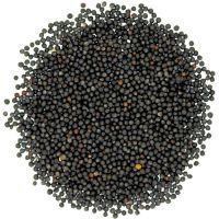 Grade A Top Quality Rape seeds / Canola Seeds For Sale