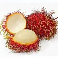 Top Grade Fresh Rambutan