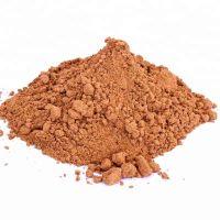 Organic Kantakari Powder