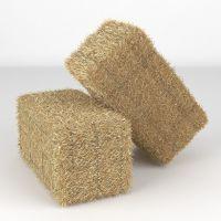 High Quality Straw Bale