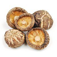 Raw Dried Shiitake Mushroom