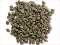 green coffee beans (arabica type)