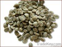 Export Green Coffee Beans   Green Coffee Bean Importer   Green Coffee Beans Buyer   Buy Green Coffee Beans   Green Coffee Bean Wholesaler   Green Coffee Bean Manufacturer   Best Green Coffee Bean Exporter   Low Price Green Coffee Beans   Best Quality Gre