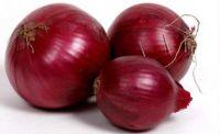 Fresh Onion,