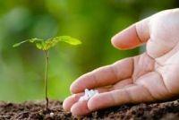 Talc For Fertilizer Coating