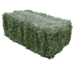 Alfalfa Hay Cubes and Bales