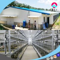 animal husbandry equipment Chicken Cage Feeding Equipment Poultry Chicken House