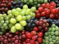 Fresh Class 1 Grapes, Fresh Seedless Grapes from South Africa