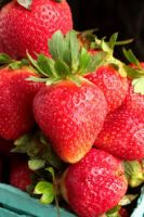 Fresh Strawberries Class 1, Frozen Strawberries IFQ