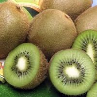 Fresh Class 1 Kiwi fruits, Fresh Kiwi Fruits from South Africa