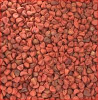 Hight Quality Annatto Seed
