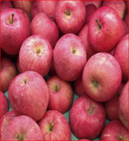 Fresh Fuji Apple Grade 1: