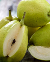 Fresh Sweet Packham Pears