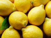 Best Quality Fresh Lemon