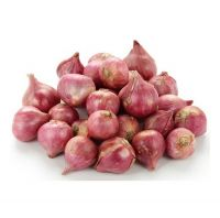 Small Onions for sale