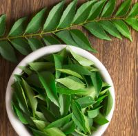 Fresh Curry Leaves For Sale