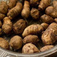 Colocasia Root Fresh Taro for sale
