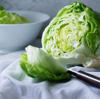 Iceberg Lettuce for sale