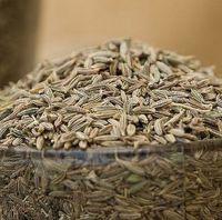 Cummin Seeds for sale
