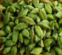 Green Cardamon Seed Available