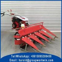 Self Propelled Windrower for Sale