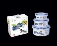 PP plastic food grade airtight food box R-8801
