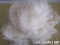 carded wool waste
