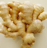 Ginger fresh ginger, vegetable, spice