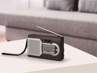 Hand-held size Radio