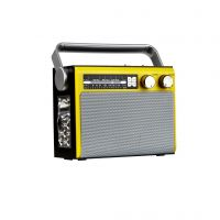 Wireless Buletooth Portable Radio With Flashlight