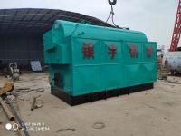 Horizontal coal/biomass fired steam boiler