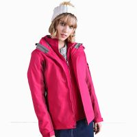 Hot Sale Women Winter 100% Polyester Thick Waterproof Outdoor Sports Jackets