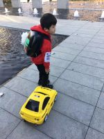 Toy luggage case for car