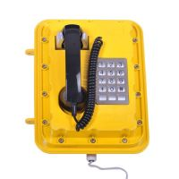 Oil Field Explosion-proof Waterproof Telephone