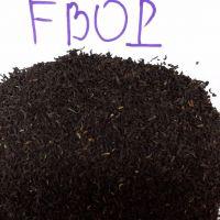 BLACK TEA FBOP