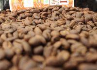 Arabica Green Coffee