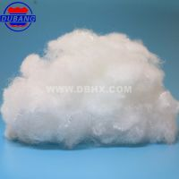 Nylon6  Staple Fiber  100D