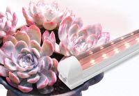 Full spectrum led vegetable flower carnivorous plant growth lamp fleshy fill light anti-personal color