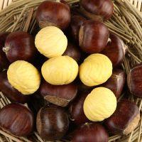 Raw fresh chestnut