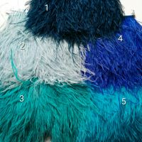 ostrich metric feather
