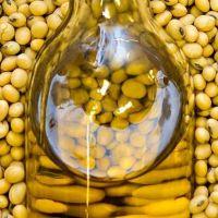 Crude Soyabean/Soybean Oil.
