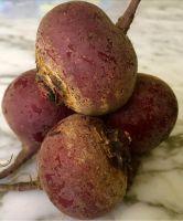 Beetroot Fresh vegetable