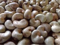 Super Raw Quality Cashew Nuts