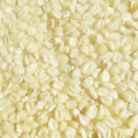 High Quality White Maize(Corn)