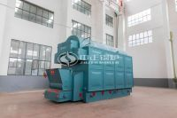 DZL coal-fired steam boiler 4 tons per hour