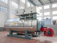 الغاز المرجل الصناعي مراجل توليد الماء الساخن WNS kw700