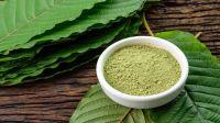 Indonesian Extracted Green Kratom