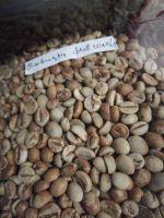 Coffee Bean Robusta Javanese from Indonesia