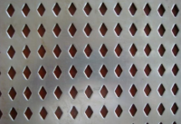 0.3-15mm Perforated Stainless Steel Wire/Metal Me'shManufacturer